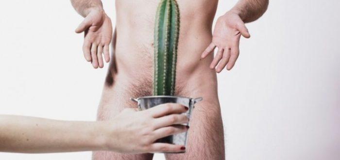 Comment fonctionne la croissance du pénis